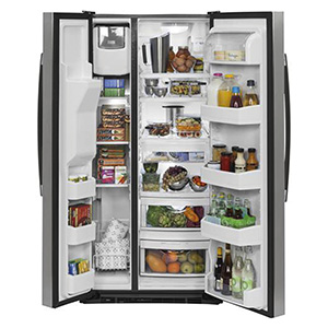 GE 22.5 cu ft Side-By-Side Refrigerator