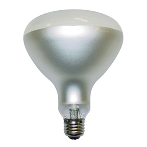 Feit R40 Pool & Spa Incandescent Flood 500W Frost