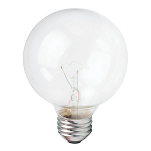 Philips G25 Globe Incandescent Bulb 40W Clear