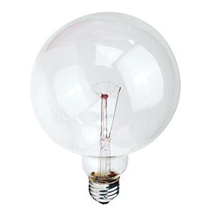 Philips G40 Globe Incandescent Bulb 60W Clear