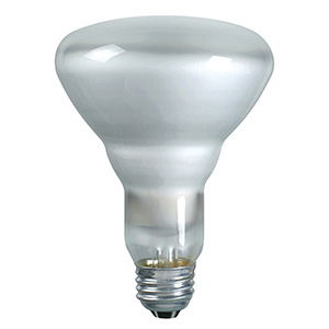 Philips BR30 Incandescent Flood 65W