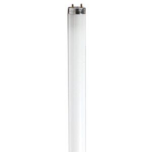 Philips 25W T8 Fluorescent Lamp F25T8CW 4100K