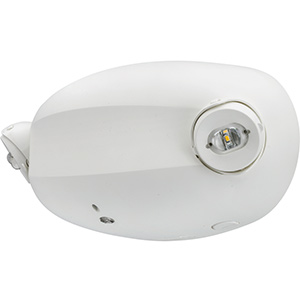 Lithonia 2-Head LED Self-Diagnostic Emergency Light