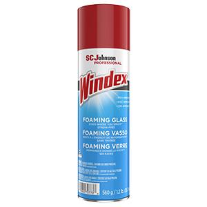 Windex Glass & Multi-Surface Cleaner 20 oz Aerosol