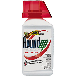 Roundup Concentrate, Quart