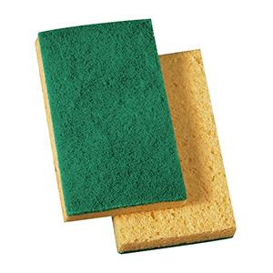 Scrub-n-Sponge