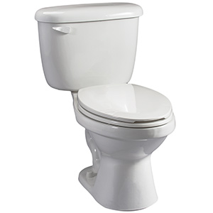 Briggs 1.28 GPF White Elongated Toilet Complete