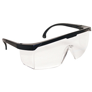 Hornets Safety Glasses Clear Lens