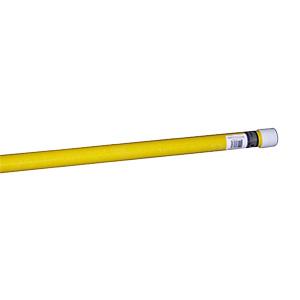 Pentair Fiberglass Pole 16 Ft